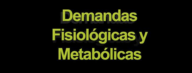 Tenis – demandas fisiológicas y metabólicas