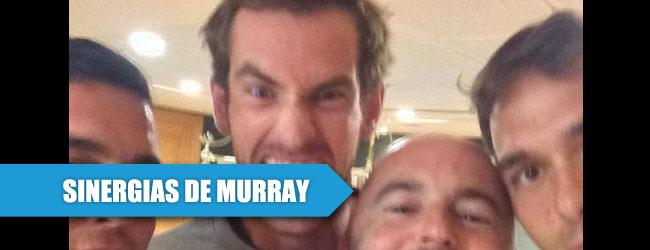 Murray, el éxito de la sinergia y de saber sumar